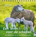 BUREAUKALENDER 2021 LEVEN VOOR DE SCHAPE - 65508951