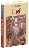 JOZEF DIENENIN GODS OPDRACHT - WESTERINK, J. - 9789033128158