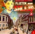 FLUITEN NAAR SALLIE CD #2 VERRAAD - FRINSEL - 8713318209028