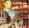 FLUITEN NAAR SALLIE CD #4 DE BRIEF - FRINSEL - 8713318209042