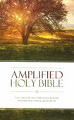 AMPLIFIED HOLY BIBLE - THINLINE [2015] - 9780310443872