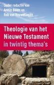 THEOLOGIE VAN HET NIEUWE TESTAMENT - BAUM, ARMIN; HOUWELING, ROB VAN - 9789023955931