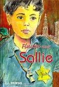 FLUITEN NAAR SALLIE - FRINSEL, J.J. - 9789033126888