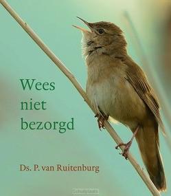WEES NIET BEZORGD - RUITENBURG, DS. P. VAN - 9789033130809