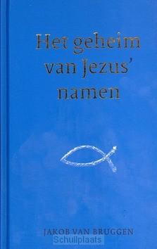 HET GEHEIM VAN JEZUS' NAMEN - BRUGGEN, JAKOB VAN - 9789043527248