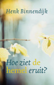 HOE ZIET DE HEMEL ER UIT? - BINNENDIJK, HENK - 9789043532112