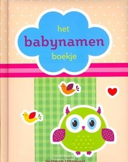BABYNAMEN BOEKJE - 9789048306695