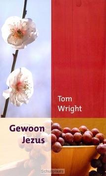 GEWOON JEZUS - WRIGHT, TOM - 9789051944518