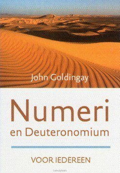 NUMERI EN DEUTERONOMIUM VOOR IEDEREEN - GOLDINGAY, JOHN - 9789051945041