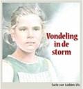 VONDELING IN DE STORM - LEDDEN-VIS, SARIE VAN - 9789055519187
