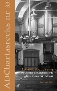 CONSOLIDATIE EN CRISIS - DRIEL, C.M. VAN - 9789055605378