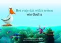 HET VISJE DAT WILDE WETEN WIE GOD IS - ALBERTS-JONASSE, MELLODY - 9789059991538