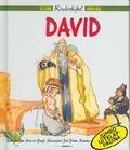 DAVID - GRAAF - 9789060678527