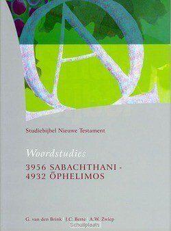 STUDIEBIJBEL NT 15 WOORDSTUDIES 5 - SBNT - 9789062054152