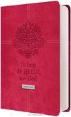 BIJBEL HSV MET PSALMEN 10X15 LEER, ROOD - HERZIENE STATENVERTALING - 9789065394484