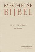 MECHELSE BIJBEL JOB PSALMEN - LEEUWEN, J.H. VAN - 9789065395054