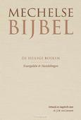 MECHELSE BIJBEL EVANGELIEN - HANDELINGEN - LEEUWEN, J.H. VAN - 9789065395061
