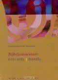 STUDIEBIJBEL OT 11 EZECHIEL DANIEL - 9789077651308
