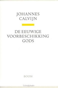 DE EEUWIGE VOORBESCHIKKING GODS - CALVIJN, J. - 9789085067993