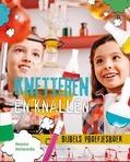 KNETTEREN EN KNALLEN - HOLWERDA, HANNA - 9789085433798