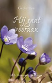 HIJ GAAT VOORAAN - GROENEWEG-R, M.A. - 9789087183622
