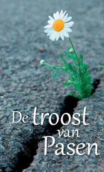 TRAKTAAT TROOST VAN PASEN SET 25 - 9789087720728