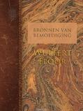 BRONNEN VAN BEMOEDIGING: WULFERT FLOOR - FLORIJN, HENK - 9789088653629