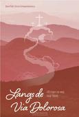 LANGS DE VIA DOLOROSA - PALM, DIANE; SCHIPAANBOORD, CORINA - 9789088972683