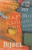 BIJBEL NBV STANDAARD ORANJE - NIEUWE BIJBELVERTALING - 9789089120045