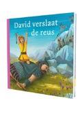 DAVID VERSLAAT DE REUS - PRENTENBIJBEL - 9789089120724