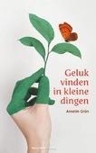 GELUK VINDEN IN KLEINE DINGEN - GRÜN, ANSELM - 9789089723437