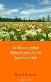 ZICHTBAAR GELOOF BIJBELSTUDIES BIJ DE JA - KOSTER, KOERT - 9789402109481