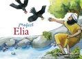 PROFEET ELIA - DIJKMEIJER, JOLANDA; DIJKMEIJER, NOREEN - 9789402906455