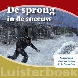 DE SPRONG IN DE SNEEUW LUISTERBOEK - ZEEUW JGZN, P. DE - 9789461151117