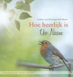 HOE HEERLIJK IS UW NAAM - HARTINGSVELDT-M, A. VAN - 9789462782846