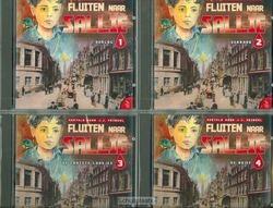 FLUITEN NAAR SALLIE LUISTERBOEK - FRINSEL - DH8209052